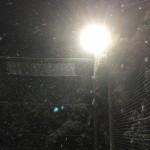 雪をも溶かすアツい個サル!?2/11土曜個サルレポート
