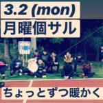 【3/2 (mon) 月曜個サル】〜完全に忘れていました〜